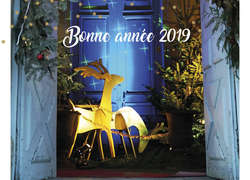 [Photo] bonne annee 2019