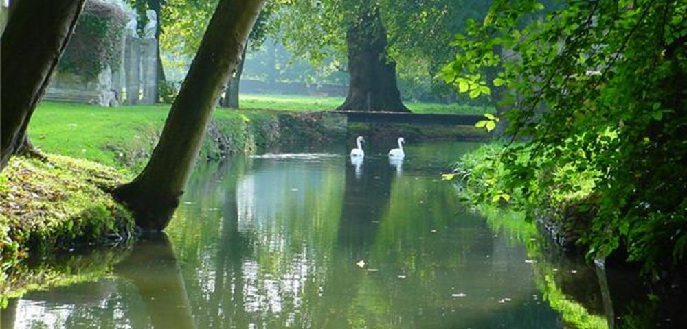 Les travaux et restaurations du parc et des jardins de for Circuit jardins anglais